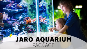 JARO Aquarium Package of JARO Hotels in Quebec City